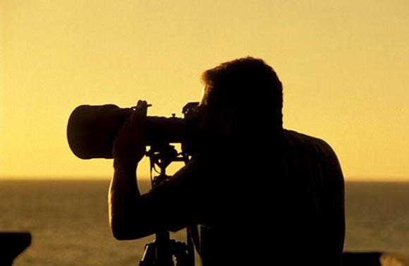 foto-araquem